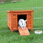 Casita conejo