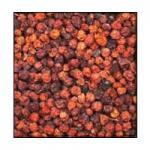 Frutos del arbol Serbal de los cazadores