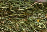 Heno Premium de Selva Negra cosecha 2017