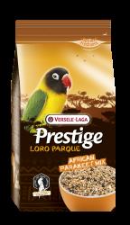 African Parakeet Loro Parque Mix