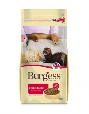Burgess Ferret Buffet Chicken