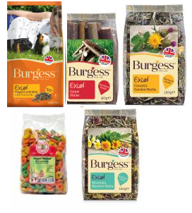 Burgess Pack cobaya 1