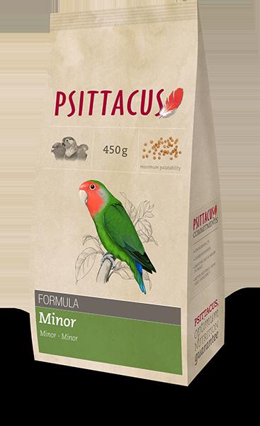 Psittacus minor